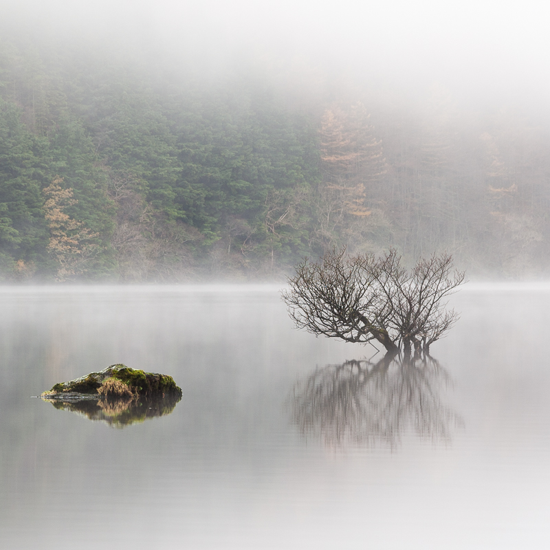 Dornoch Bay Mist